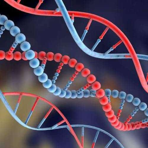 Working out at a high intensity can alter your DNA for the better! – report by CBS